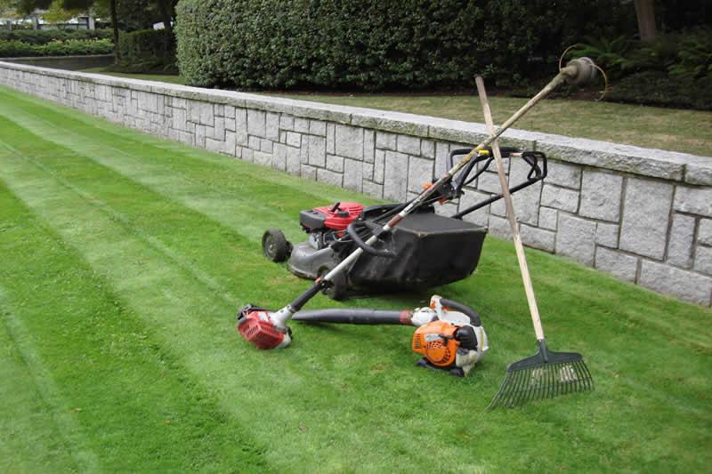 Landscaping Maintenance Plans & Services